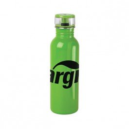 Green 25 oz Stainless Steel Flip Top Water Bottle