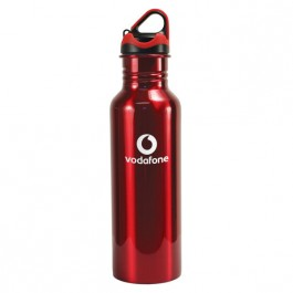 Red 24 oz Stainless Steel Quest Water Bottle