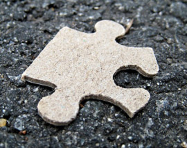 Puzzle Piece Fragment